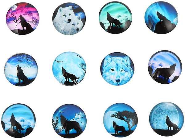 12 Kühlschrankmagnete Wölfe
