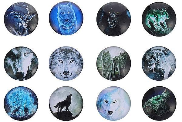 12 Kühlschrankmagnete Wolf 3D